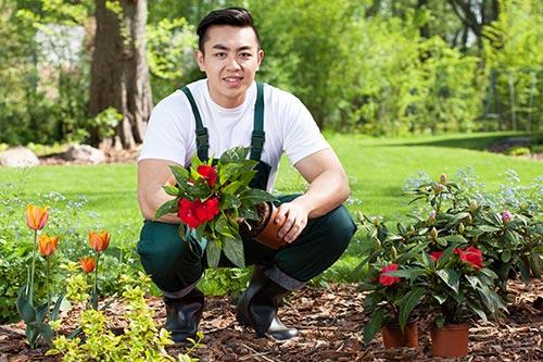 Jardinier for Service jardinier